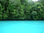 パラオ共和国のミルキーウェイ(The Milky Way Lagoon, Republic of Palau)