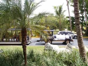 バルセロ・バヴァロ・ビーチホテル(ドミニカ共和国プンタカーナ)のホテル内トラム