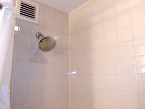 ニューヨークマリオットマーキース(アメリカ合衆国ニューヨーク)の部屋のバスルームシャワー