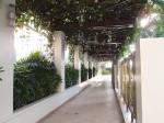 マニラホテル(フィリピン・マニラ)の屋外プール横の通路