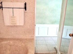 プランテーションベイリゾート&スパ(フィリピン・マクタン島)の部屋のバスルームから