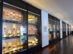 ホテルモントレ沖縄スパ&リゾートのランプコレクション