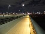 東京お台場、有明地域から豊洲地域へ抜ける橋