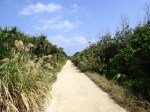 久高島北東のカペール岬へ続く一本道(Northeast path at Kudaka-jima[Kudakajima island], Okinawa-ken)
