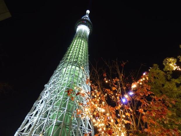 東京スカイツリーの夜景(The night view of the Tokyo Sky Tree, Tokyo Japan)
