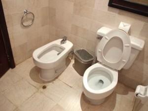 パラディサス・プンタカーナ・リゾート(ドミニカ共和国プンタカーナ)の部屋のバスルームトイレ