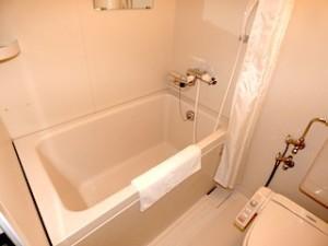 西表島ジャングルホテルパイヌマヤの部屋のバスルーム