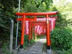 佐助稲荷神社の参道、鳥居、神奈川県鎌倉市(Torii at Sasukeinaijinja, Kamakura Kanagawa-ken)